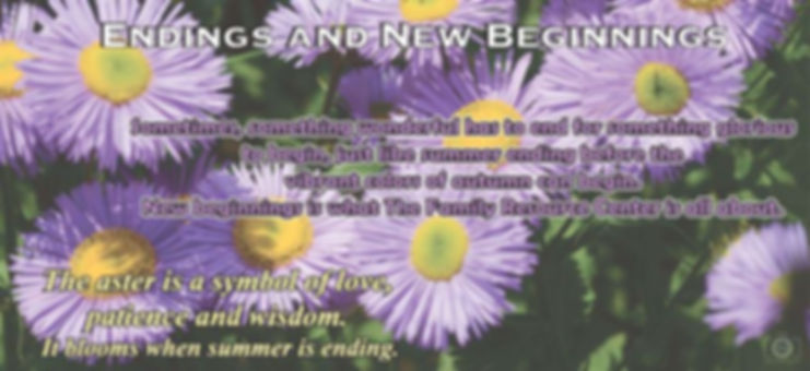 August Newsletter header.jpg