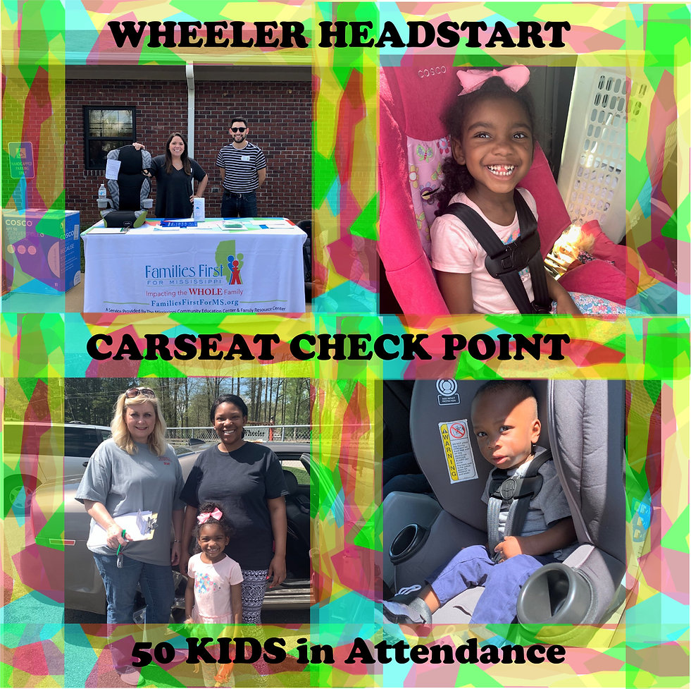 Carseat Check Point.jpg