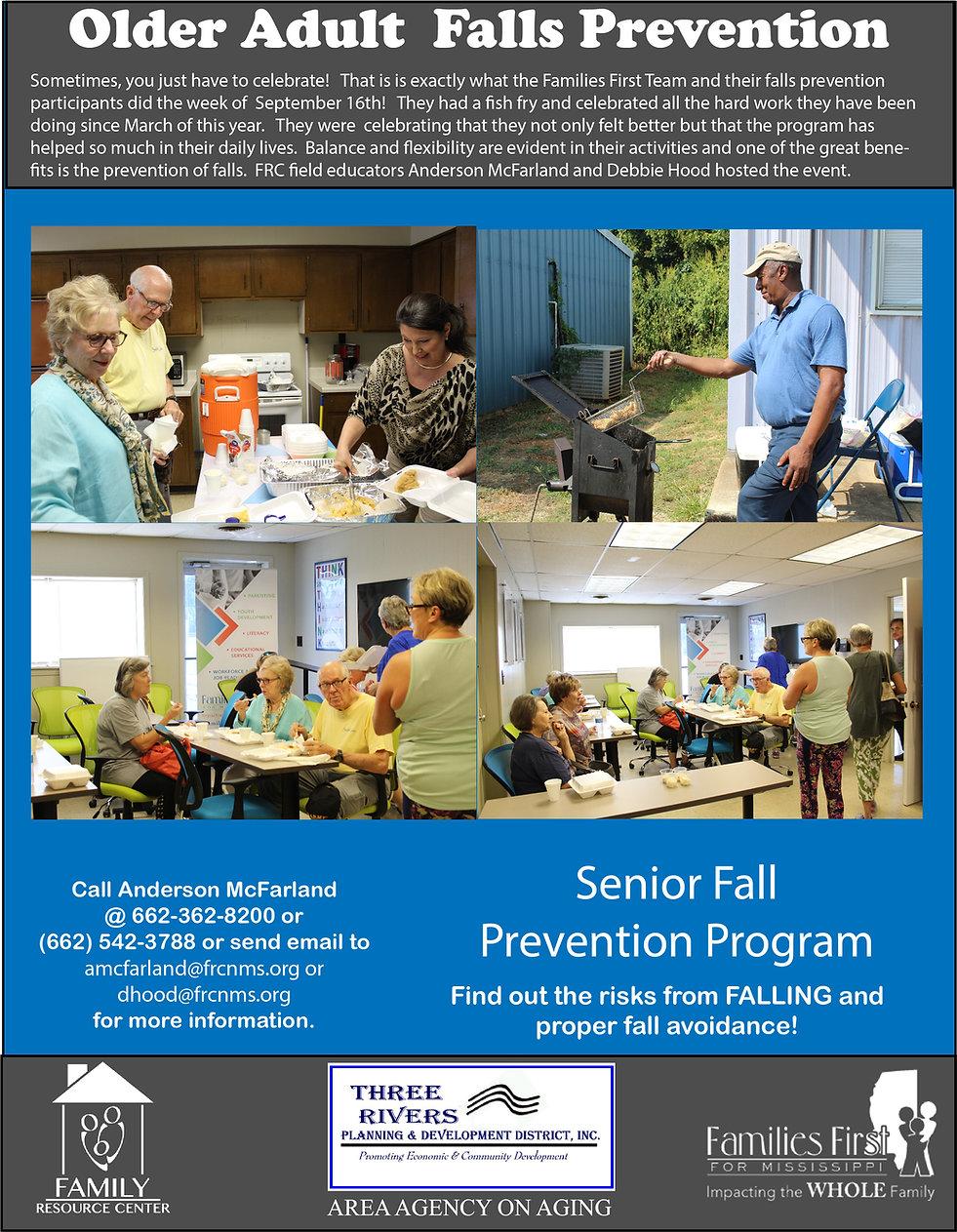 Poster 8.5x11 Fall Prevention.jpg