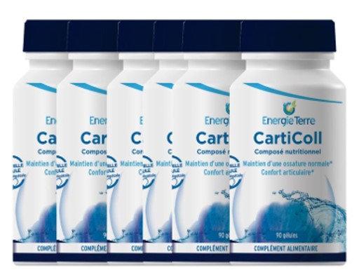 CARTICOLL (6 flacons de 90 gélules)