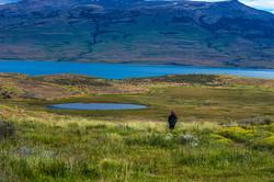 Simplemente Patagonia