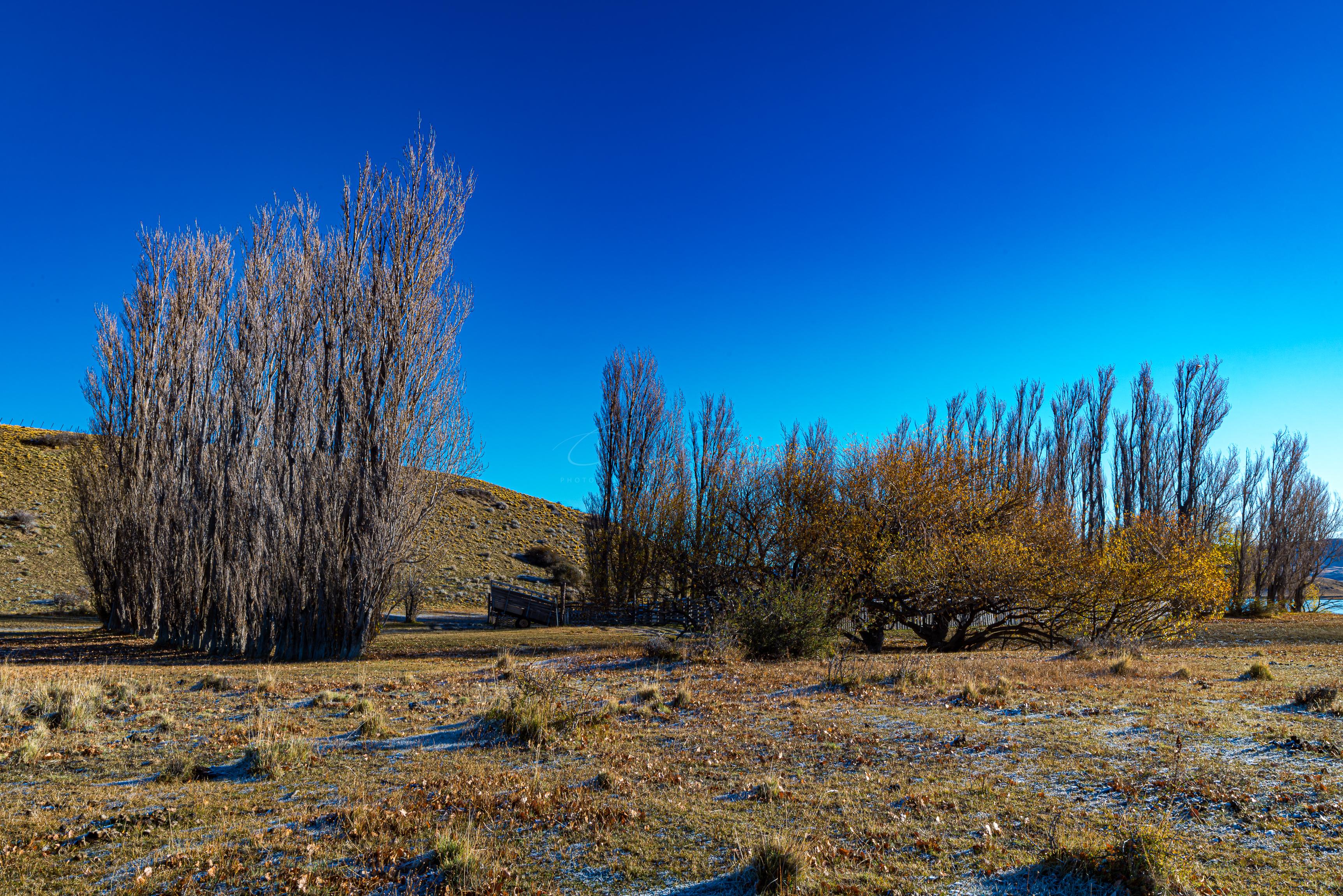 Estancia Patagonica