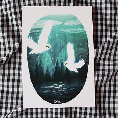 A5 Whimsical Owls - Art Print
