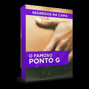 BOX PONTO G.png