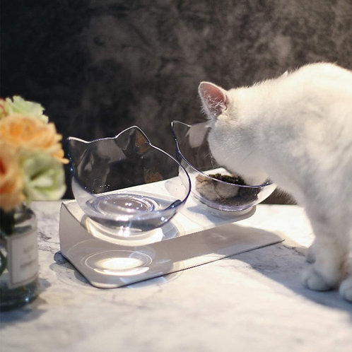 Double Pet Bowl With Raised Stand,15°Tilted Platform to Reduce Neck Pain