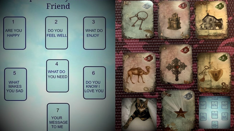 Card Reading for Your Furry Friend: Sent Via Email with Picture and Descriptions