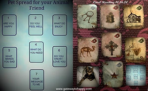 Example of Animal Card Reading.jpg
