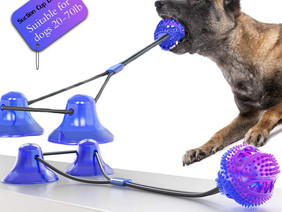 The Purpose of Interactive Dog Toys