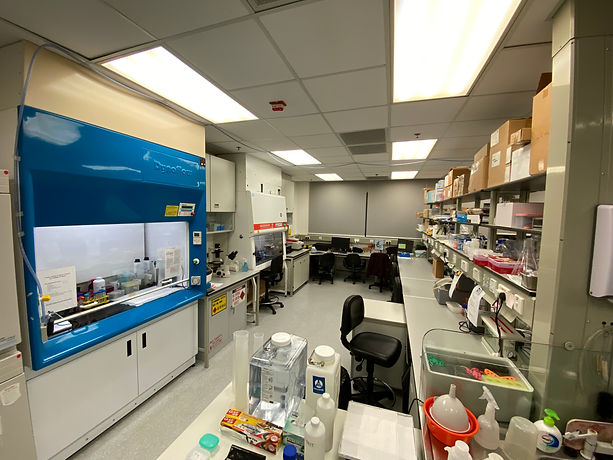 Our lab.jpg