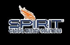 spirit_edited.png