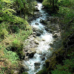 rivière chris.jpg