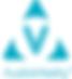 logo AudioVitality 1.png