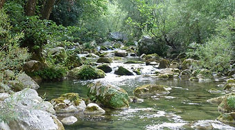 rivière Christelle.jpg