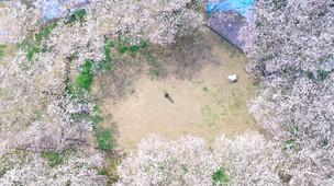 Drone engineer :  Tetsuya sonoda