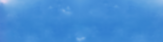 banner web.png