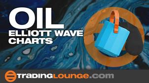 Oil Elliott Wave Charts