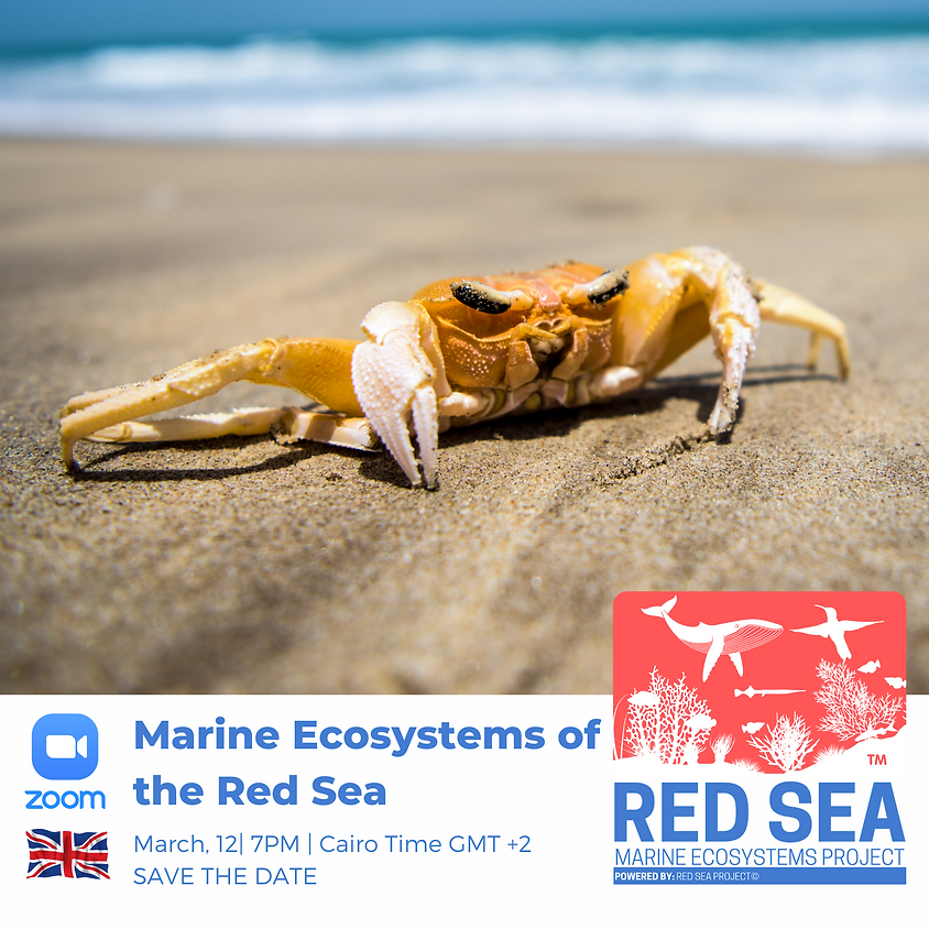 Marine Ecosystems of the Red Sea