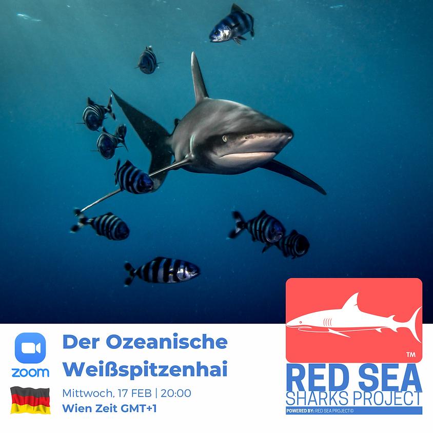 Der Ozeanische Weißspitzenhai