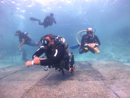 Red Sea Dive Leader™