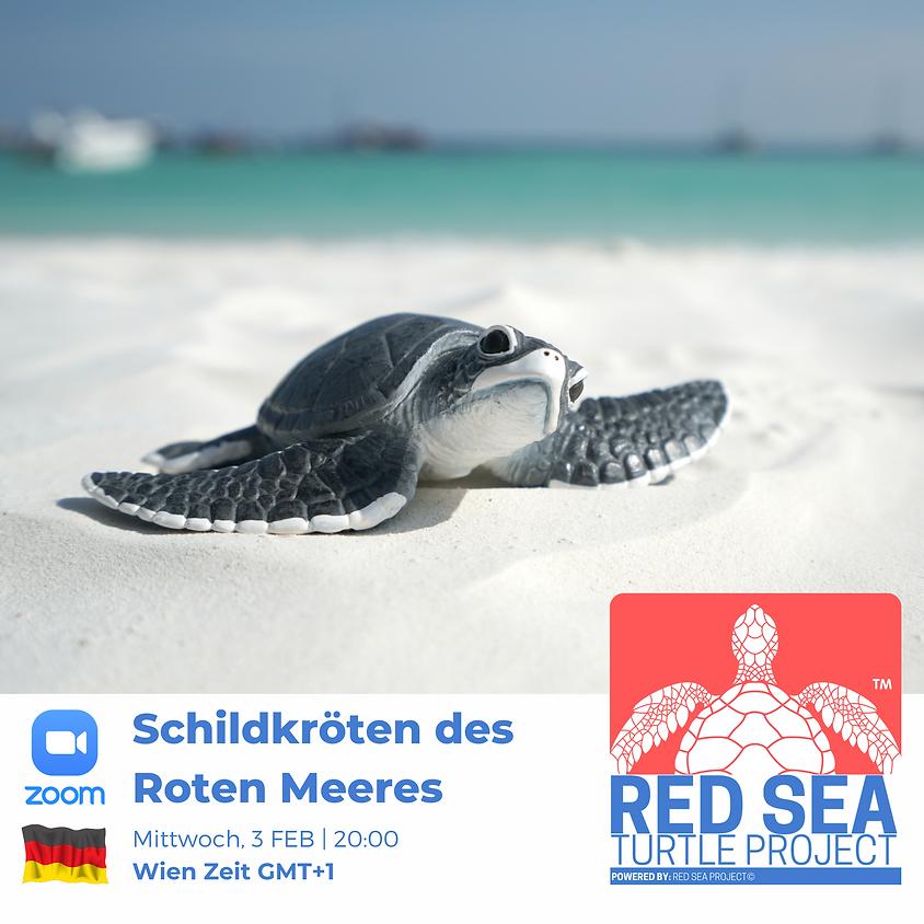 Schildkröten des Roten Meeres