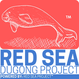 Red Sea Dugong Project.png