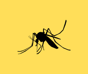 prevent yellow fever with yellow fever vaccination
