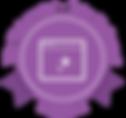 Wix Webmaster  | Wix Pro Designer