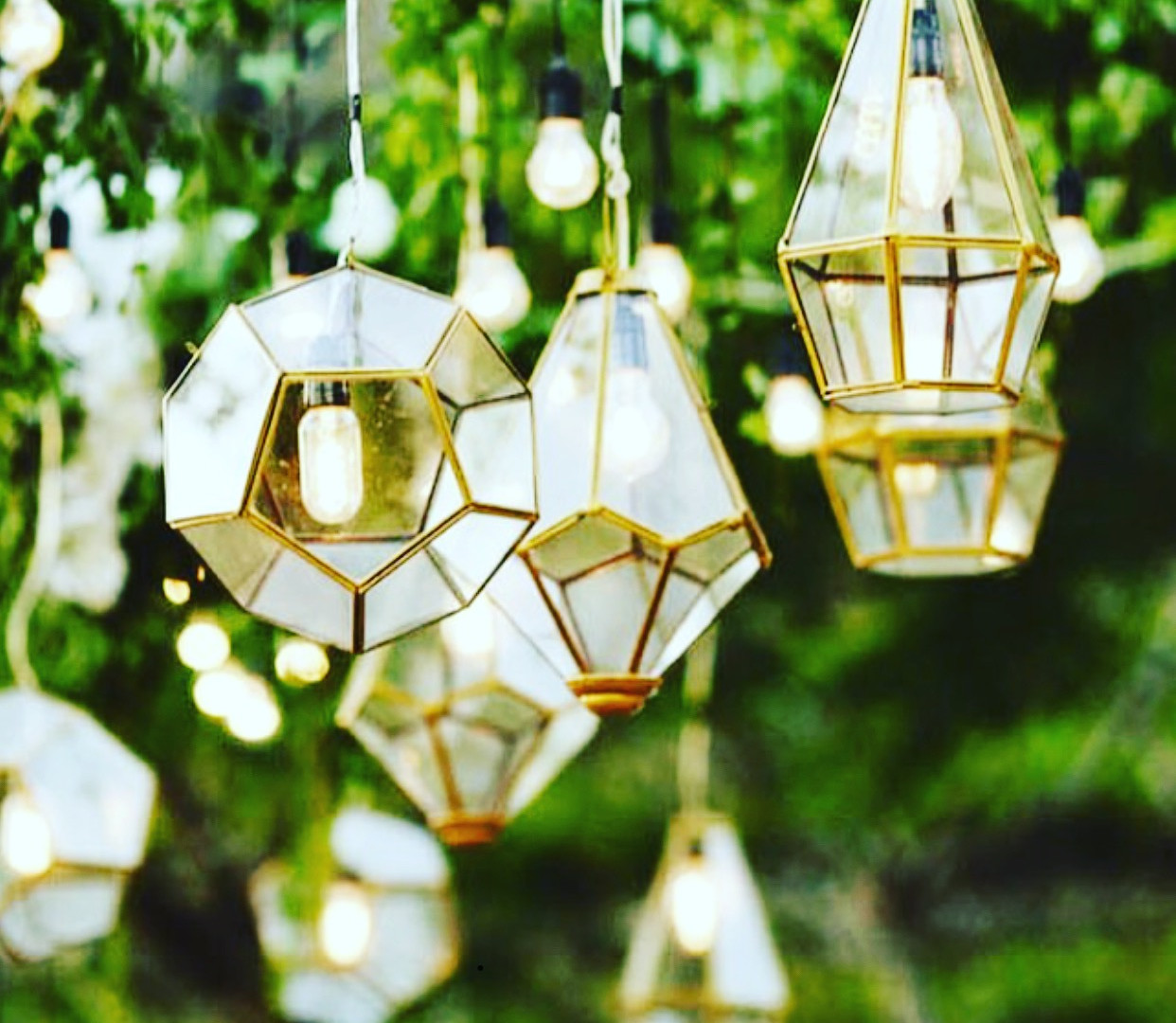 Beautiful Wedding Lights | Meadowbank Estate | Wedding Venue | Campbellfield