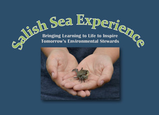 Salish Sea Experience Fundraiser