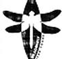 dragonflykayak.png