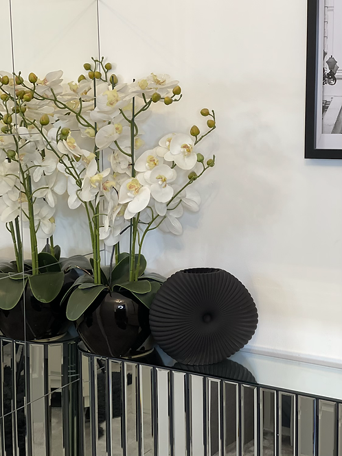 Black Shell Vase