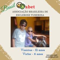 Vinícius - 12 anos;  Victor - 6 anos