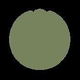 Logo V3_filled_mint.png