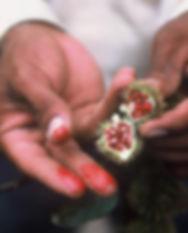 Santa Lucia fotos 032.jpg