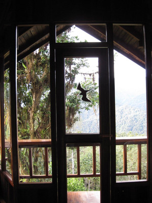 inside-our-cabin_rotated_90.jpg