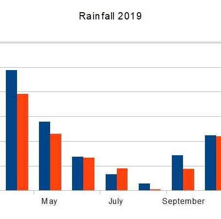Rainfall 2019