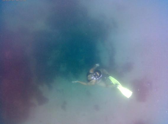 No fundo do mar