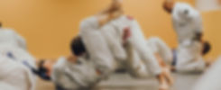 BJJ adults program