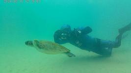 monitoramento subaquatico