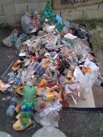 Lixo na costeira de zimbros