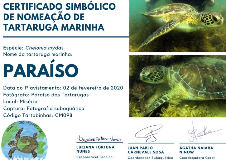 CM098 PARAÍSO.png