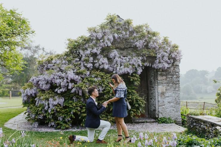 Tom & Ami | Proposal Photos
