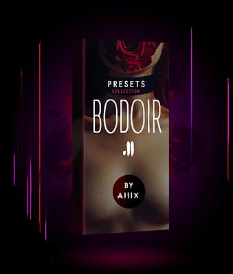 Bodoir_ll_alllx presets.png