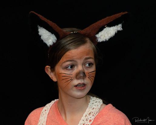 Fantastic Mr. Fox - Theatre is My Passion