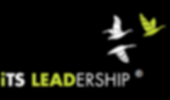 its-leadership-logo_251x1491.png