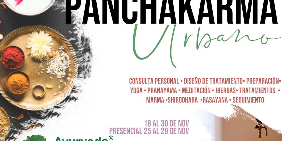 Panchakarma Urbano / Semipresencial