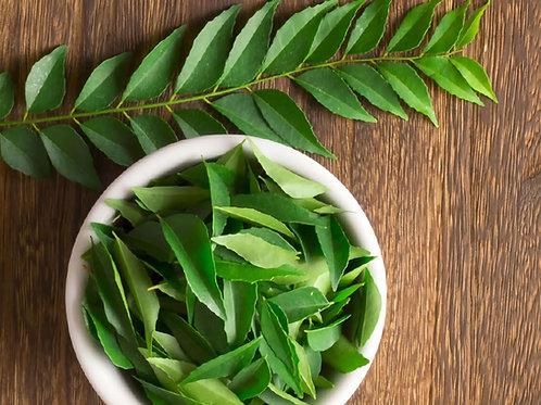 25 hojas de Curry  secas