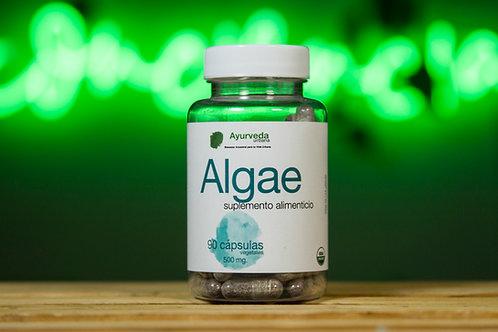 Algae orgánico de 90 cápsulas vegetales