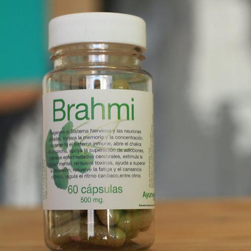 Brahmi orgánico de 60 cápsulas vegetales