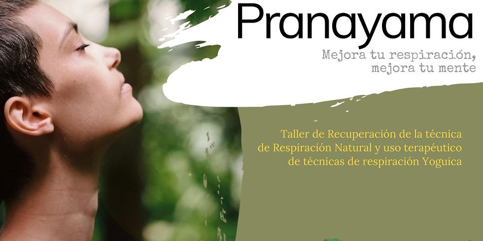Pranayama / Taller de Conciencia ❄️